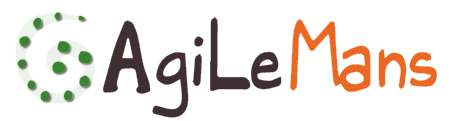 Blog AgiLeMans